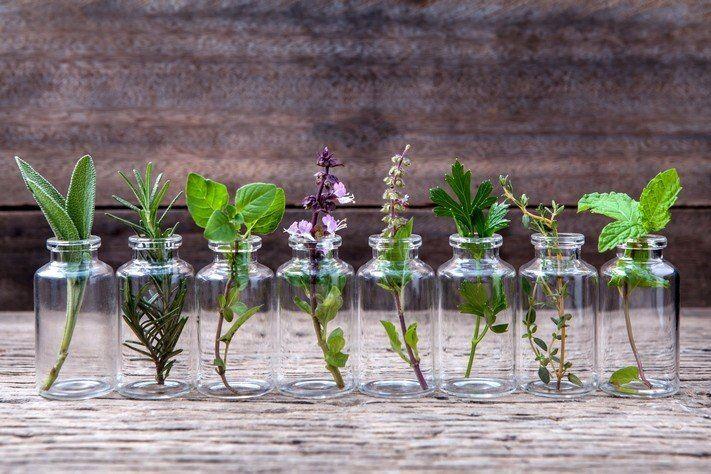 Эфирные масла из растений